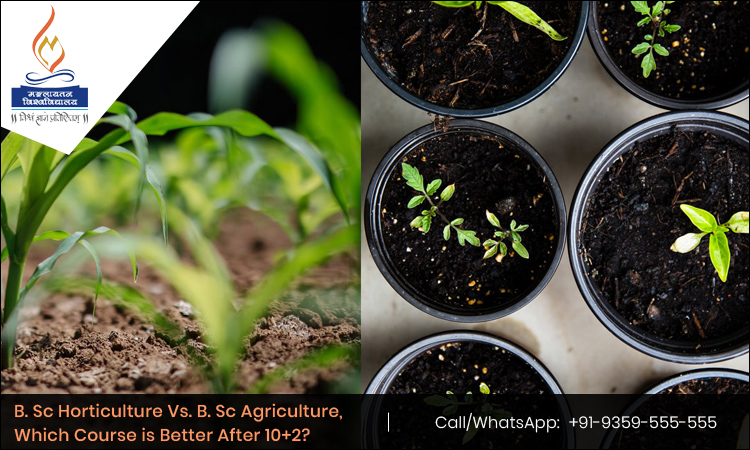 B. Sc Horticulture Vs. B. Sc Agriculture, Which Course is Better After 10+2?