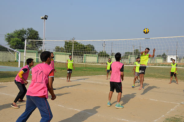 volly-2